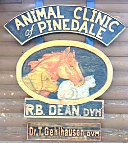 Animal Clinic of Pinedale